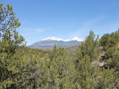 5.29 Acres Sangre De Cristo Ranches : Fort Garland : Costilla County : Colorado