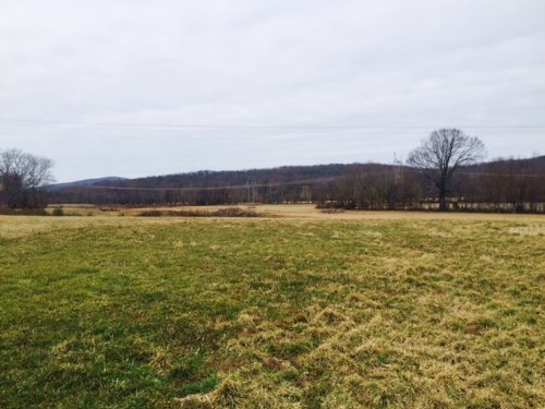 106.49+/-acres Pasture And Hunting : Pelham : Grundy County : Tennessee