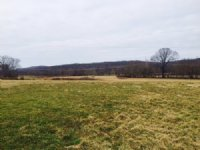 120.15+/-acres Pasture And Hunting