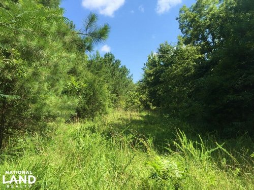 Little Mulberry Creek Tract : Autaugaville : Autauga County : Alabama