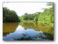 14.00 Acres Fishing Land, Hunting