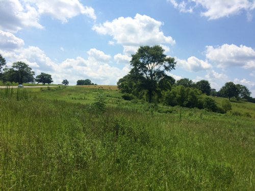 25 Acres With Excellent Hunting : Troy : Pike County : Alabama