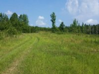 133.00 Acres Agriculture Land