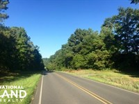 56 Acre Hunting Tract : Buena Vista : Marion County : Georgia