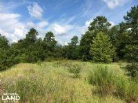 Gresham Hunting Property
