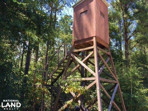 The Frankville Camp Tract : Frankville : Washington County : Alabama