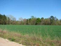 18 Acres +/- Bulloch County