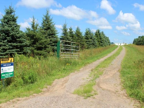Hunting Or Hobby Farm Property : Neillsville : Clark County : Wisconsin