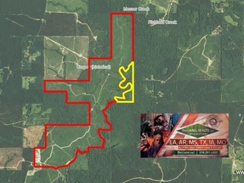 510 Ac - Hunting Tract Along Castor : Grayson : Caldwell Parish : Louisiana