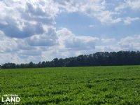 Prime Productive Farmland
