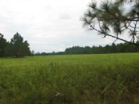 Highland Acreage Tracts 7.56 Acres