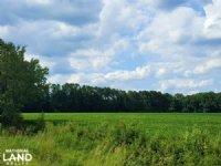 12 Acre Productive Farmland