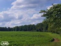 Wallace Productive Farmland