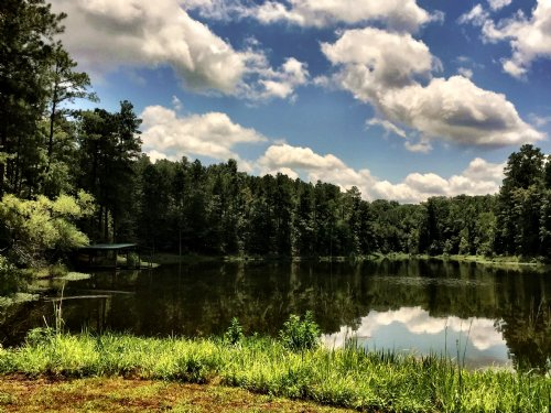 Private Lake Pasture And Woods : Bolingbroke : Monroe County : Georgia
