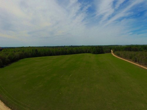 32 Acres Cultivated Fields : Reidsville : Tattnall County : Georgia