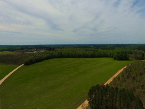 23 Acres Perfect Gentleman Farm : Reidsville : Tattnall County : Georgia