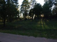 40+/- Acres Of Vacant Land Just