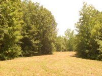 Great Hunting Tract : Deatsville : Elmore County : Alabama