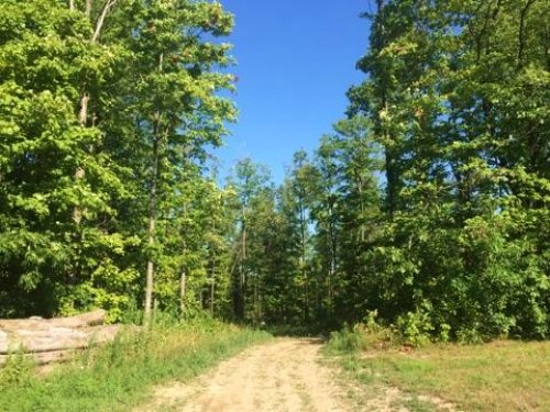 Ravenna Rd - 22 Acres : Chardon : Geauga County : Ohio