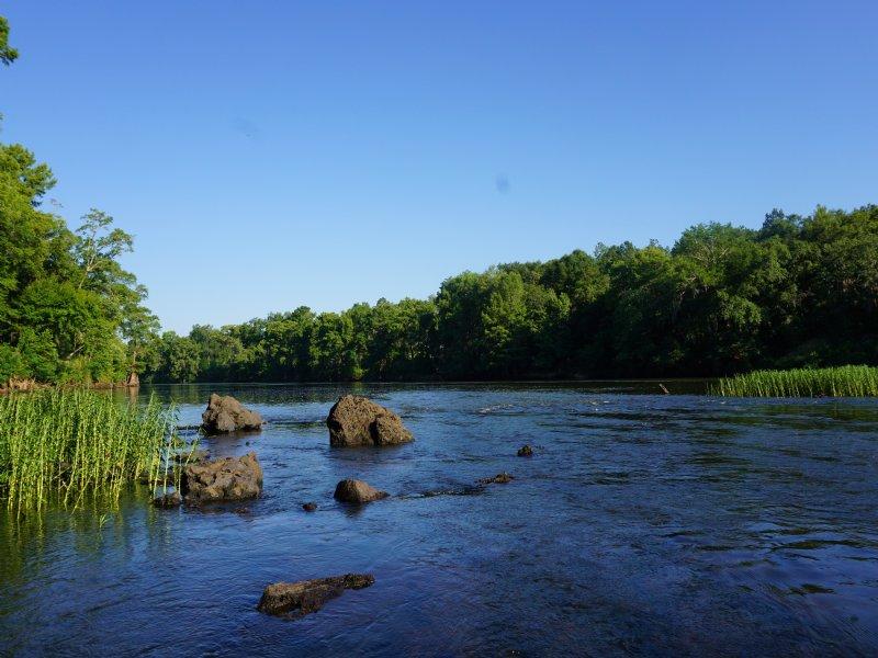 Whispering Pines Plantation : Oakfield : Worth County : Georgia
