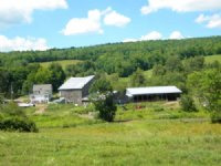 175 Acres Former Dairy Farm Pasture : Bovina : Delaware County : New York