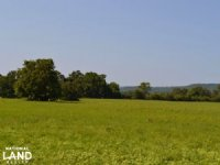 261 Acre Cattle Farm & Recreational