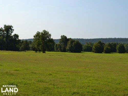 300+/- Acre Cattle & Hay Farm : Caulksville : Logan County : Arkansas