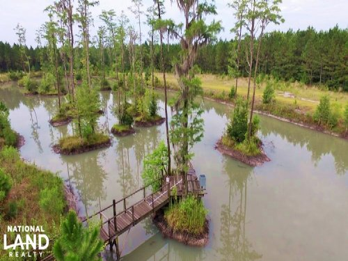 Duck Pond And Timber Investment : Waycross : Ware County : Georgia
