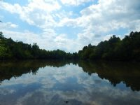 4.3 Acre Lake!