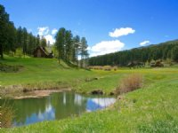 Old Ponderosa : Bayfield : La Plata County : Colorado