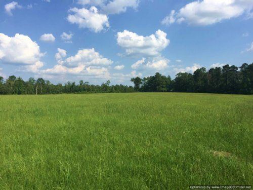 8.1± Acres : Brookhaven : Lincoln County : Mississippi