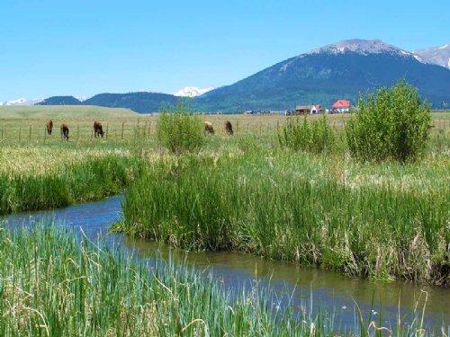 Whitten Ranch : Jefferson : Park County : Colorado