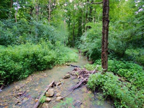 75.24 Acres; Quail Run Rd; : Elsberry : Lincoln County : Missouri
