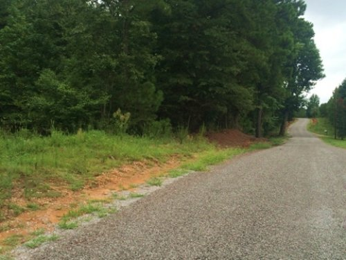 39 Acres For Sale : Scooba : Kemper County : Mississippi