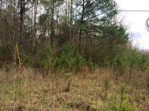 10.21 +/- Acres : Weir : Choctaw County : Mississippi