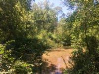 25 +/- Acres, Creek Frontage