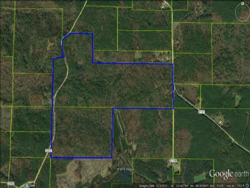 186+/- Ac Hunting / Timber : Kosciusko : Attala County : Mississippi