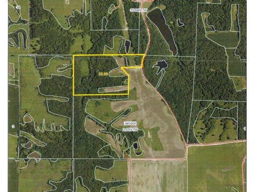 30 Acres M/l Recreational Property : St. Patrick : Clark County : Missouri