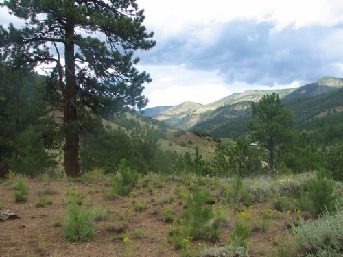 235861 - 17 Acres With No Covenants : Poncha Springs : Chaffee County : Colorado