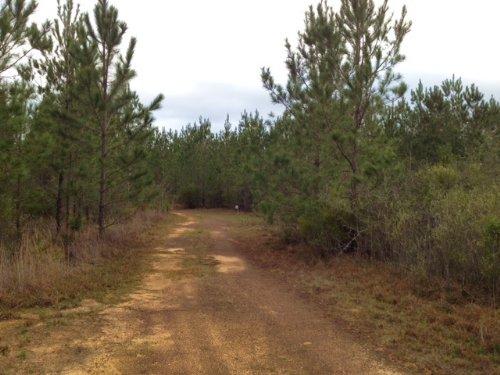 Gateswood : Robertsdale : Baldwin County : Alabama