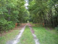 Old Marion Highway