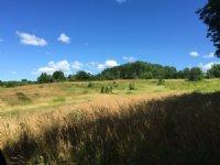 Tug Hill Valley Views