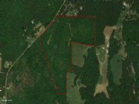 105 Acres - Cochran Mill Road : Fairburn : Fulton County : Georgia