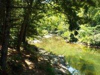 Mountain Property W/ Creek Frontage