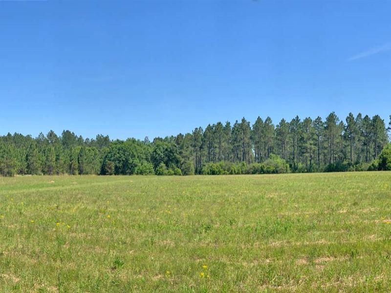 Corley Road Farm : McDavid : Escambia County : Florida