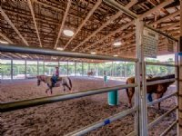 20 Ac Gorgeous Equestrian Property