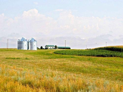 Prairie Center Pivots : Torrington : Goshen County : Wyoming
