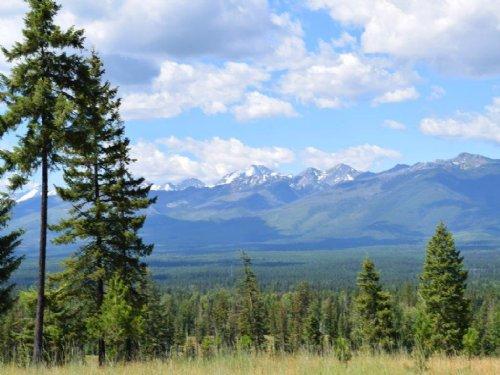 Antler Ridge Homesite 3 : Condon : Missoula County : Montana