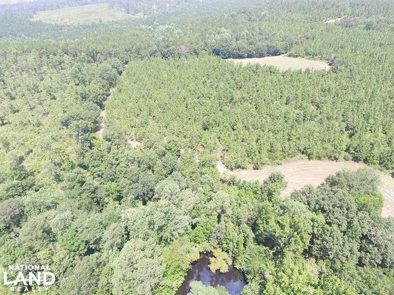 Lloyd's Green Acre Farms : Tallassee : Elmore County : Alabama
