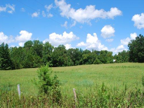 31 Acres, Hardwoods, Pond, Pasture : Buffalo : Union County : South Carolina